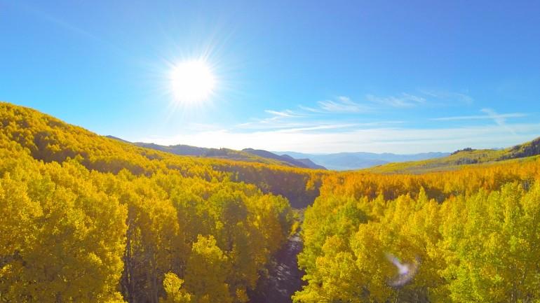 Longboarding Epic Foliage Via Drone