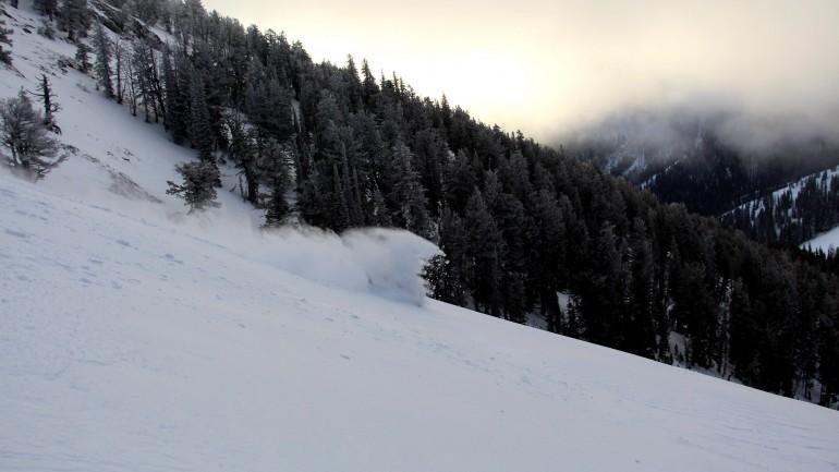Ski Bum Holidaze: A Mad Trees Thanksgiving