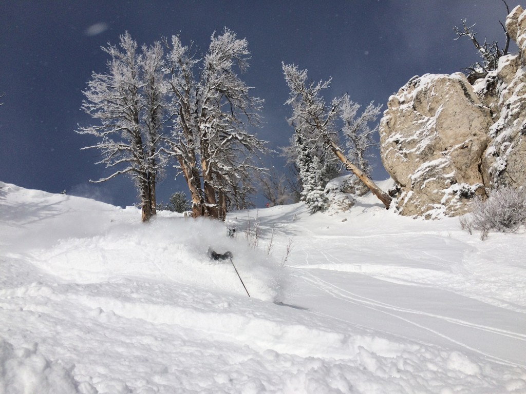 Fresh powder from Solitude Mountain Resort, Utah