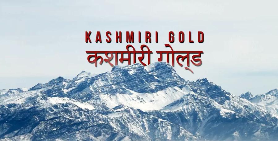 Skiing Deep Pow in India: Kashmiri Gold!