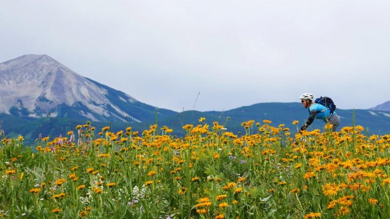 Crested Butte, Colorado Mountain Bike Trip