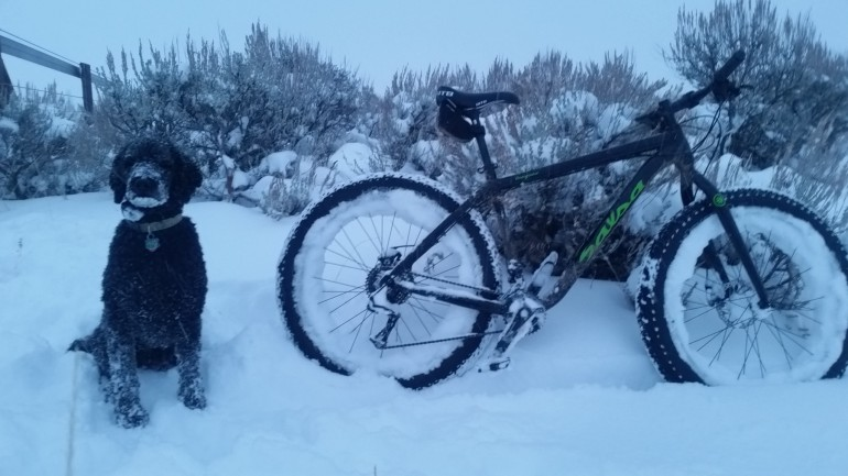 Powder Day Biking